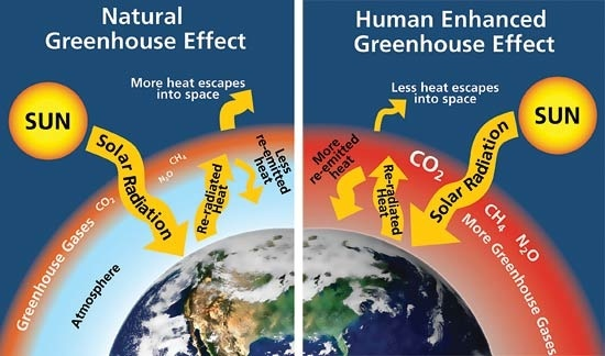 major adverse effects of greenhouse effect are listed below
