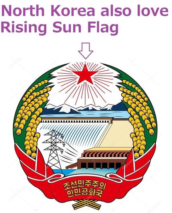 What Would Happen If You Waved The Japanese Rising Sun Flag In