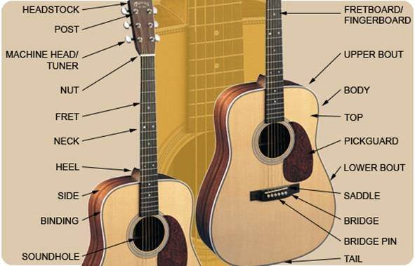 how to choose a guitar