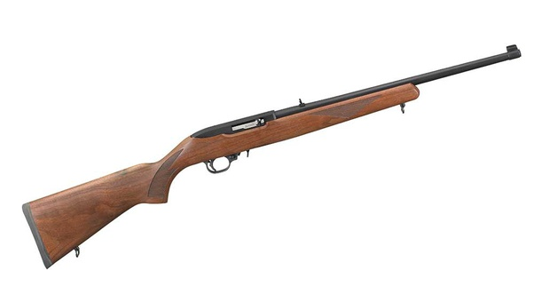 Is The Ruger 10 22 Worth The Money Or Should I Get A Cheaper Rimfire Quora