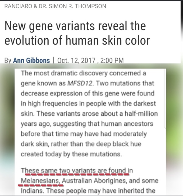 Common Gene Variants Account For Most >> Why Do Mediterraneans Have Olive Colored Skin Quora