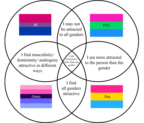 What Is The Difference Between Pansexual And Bisexual Quora