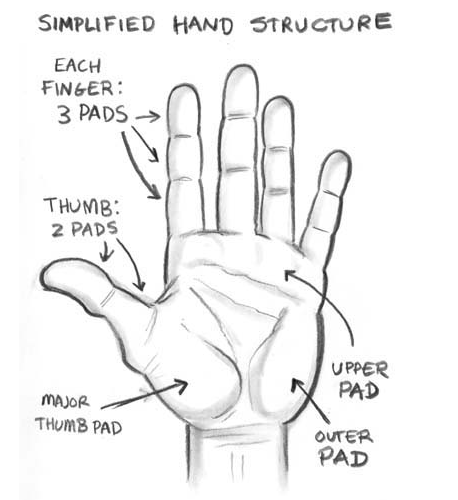 The thing about drawing hands is that if you dont do it right everyone can tell they are the most complicated thing on the human body to draw and so easy