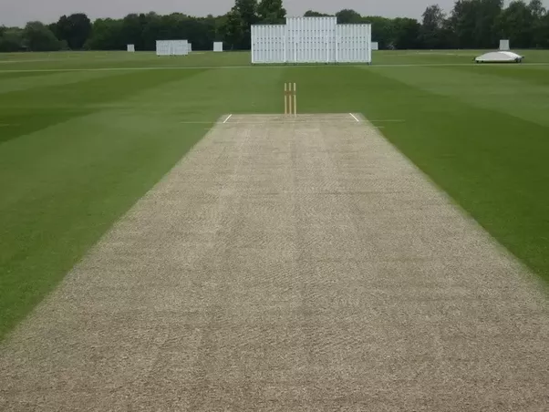 what are the various types of cricketing pitches is there a