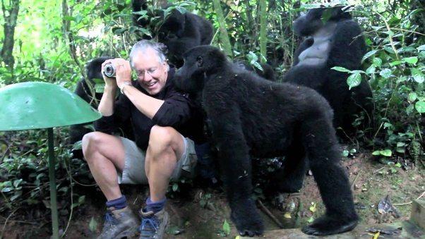 girl having sex with guy in gorilla suit