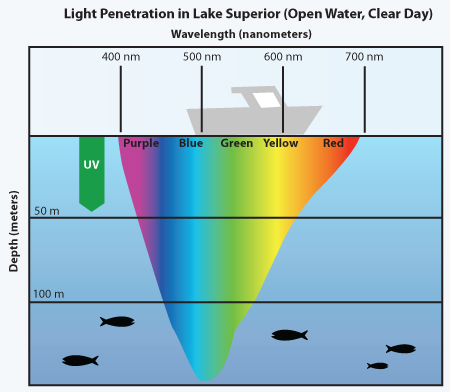 What color of light penetrates water the deepest? - Quora
