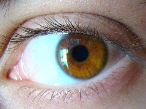 how to make dark brown eyes hazel