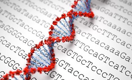 How many gigabytes would you say a single human chromosome