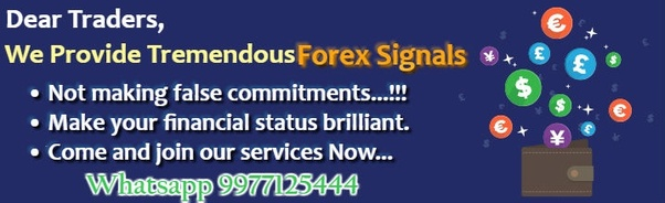 Forex signals telegram group