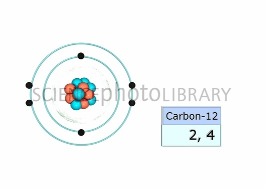 What is the electronic configuration of carbon? - Quora Carbon Electron Configuration