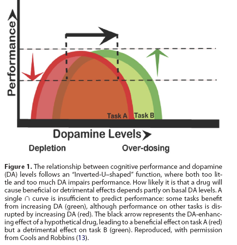 if we start of with a deficit of dopamine the endorphins created from physical activity or the adrenaline from stress it illustrates that adhders enter a
