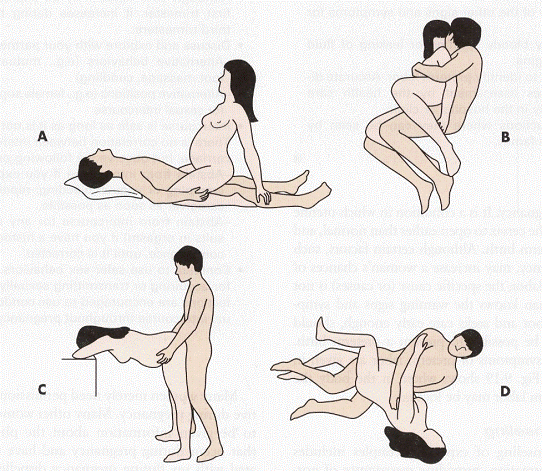 Sex position of a pregnant woman