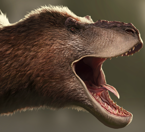 how to get a spinosaurus tooth