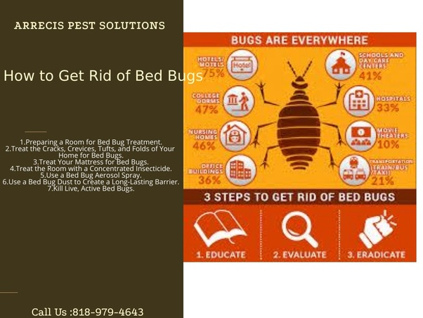 Does dry cleaning remove bed bugs? - Quora