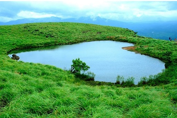 Which is the best place to visit in February, Wayanad or