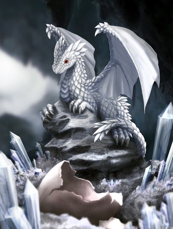 What does a white dragon symbolize in dreams? - Quora