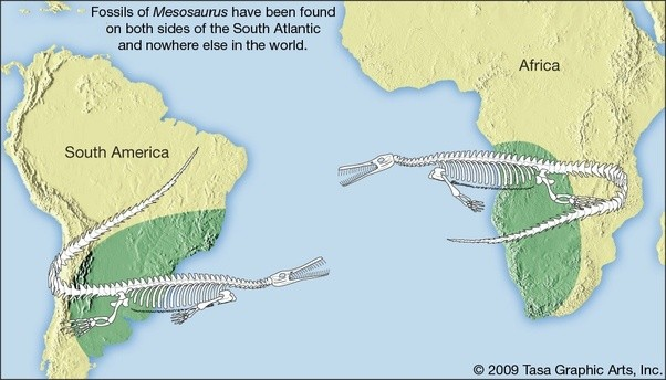 Are there geologic proofs for continents being connected 200 million several geologic units including glacial deposits extend from south america to africa in a way that only makes sense if they were connected at one time gumiabroncs Choice Image