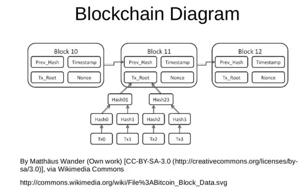 Below Are A Few Diagrams That Illustrate The Types Of Data Found Is Many Commonly Known Blockchain Systems