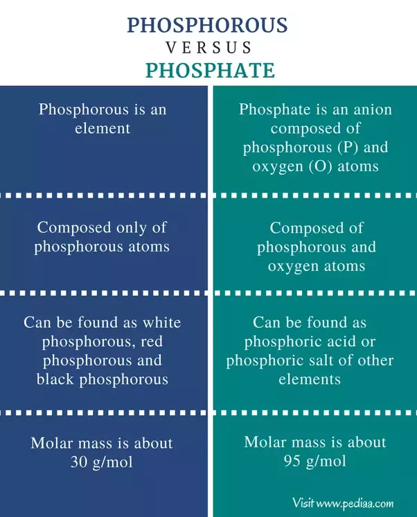 What Is The Difference Between Phosphate And Phosphorus Quora