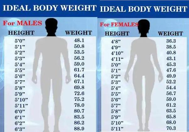 लंबाई के अनुसार शरीर का सही वजन कितना होना चाहिए, स्वस्थ रहना है तो जरूर जान लें