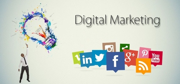 Which Is The Best Website Development Company In Delhi That Also Provide Digital Marketing And Seo Services Quora