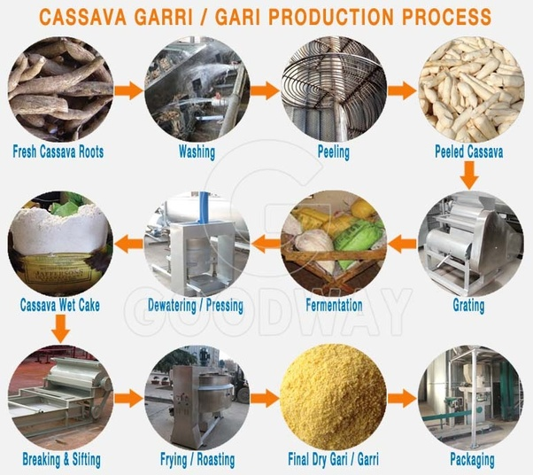 How to set up a Garri processing plant in Nigeria (Africa