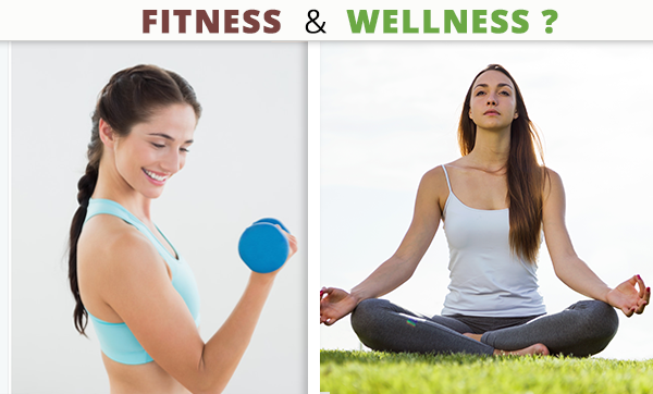 What is the difference between fitness and wellness? - Quora