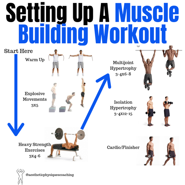 What Are Some Exercises That Build Muscle Mass Quora