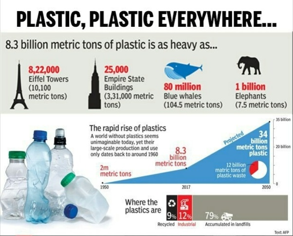 When was plastic banned in India? - Quora