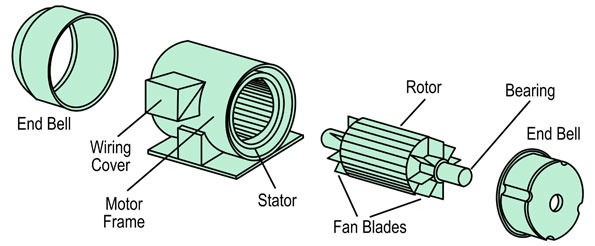 What are the parts of a squirrel-cage induction motor? - Quora