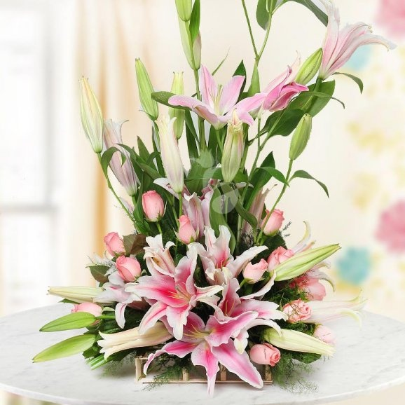 Can I Give Flowers To My Crush On Her Birthday? I Am From Chennai, Tamil Nadu, India.