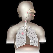 Which Is The Best Ayurvedic Centre For The Treatment Of Lung Cancer Quora