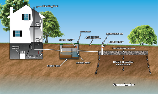 Can I use my kitchen sink water to water my yard? I can