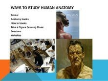 What is the best way to study human anatomy in 1st year MBBS? - Quora