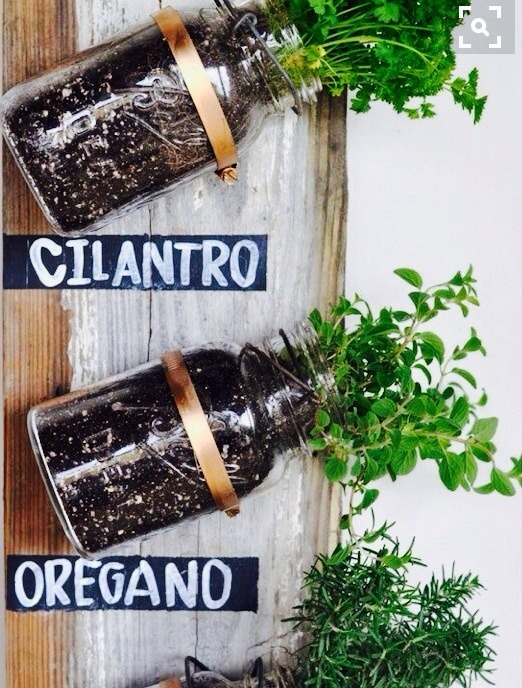 Genial Transformed :: Mason Jar Herb Garden