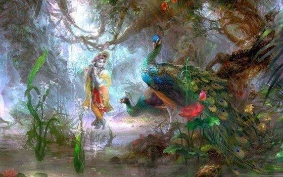 What is the significance of the peacock feather on Krishna ...