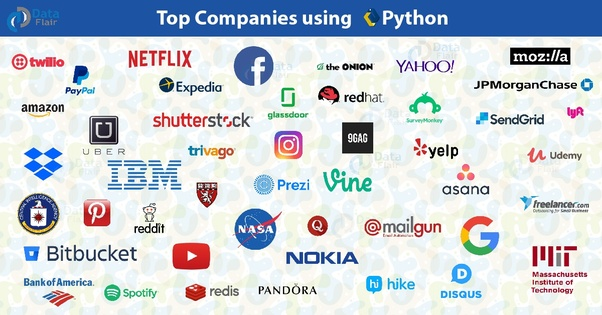 How did Python become popular in the world of programming