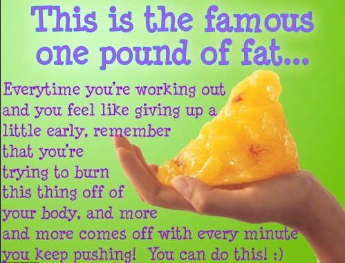 What does 1 pound of fat look like? - Quora