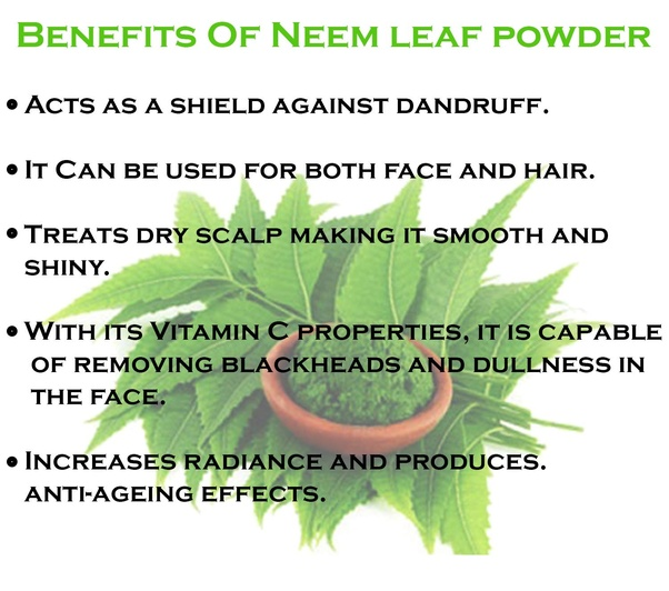 What are the benefits of neem for hair? - Quora