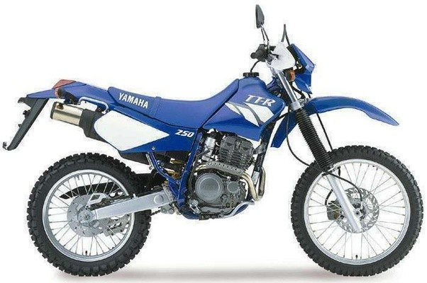 What is the top speed of Yamaha TTR 250 Quora