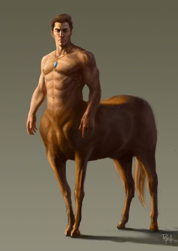 Image result for man horse