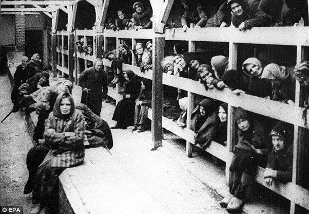 Jew Detector: How Were Diseases Spread In Concentration Camps During WW2