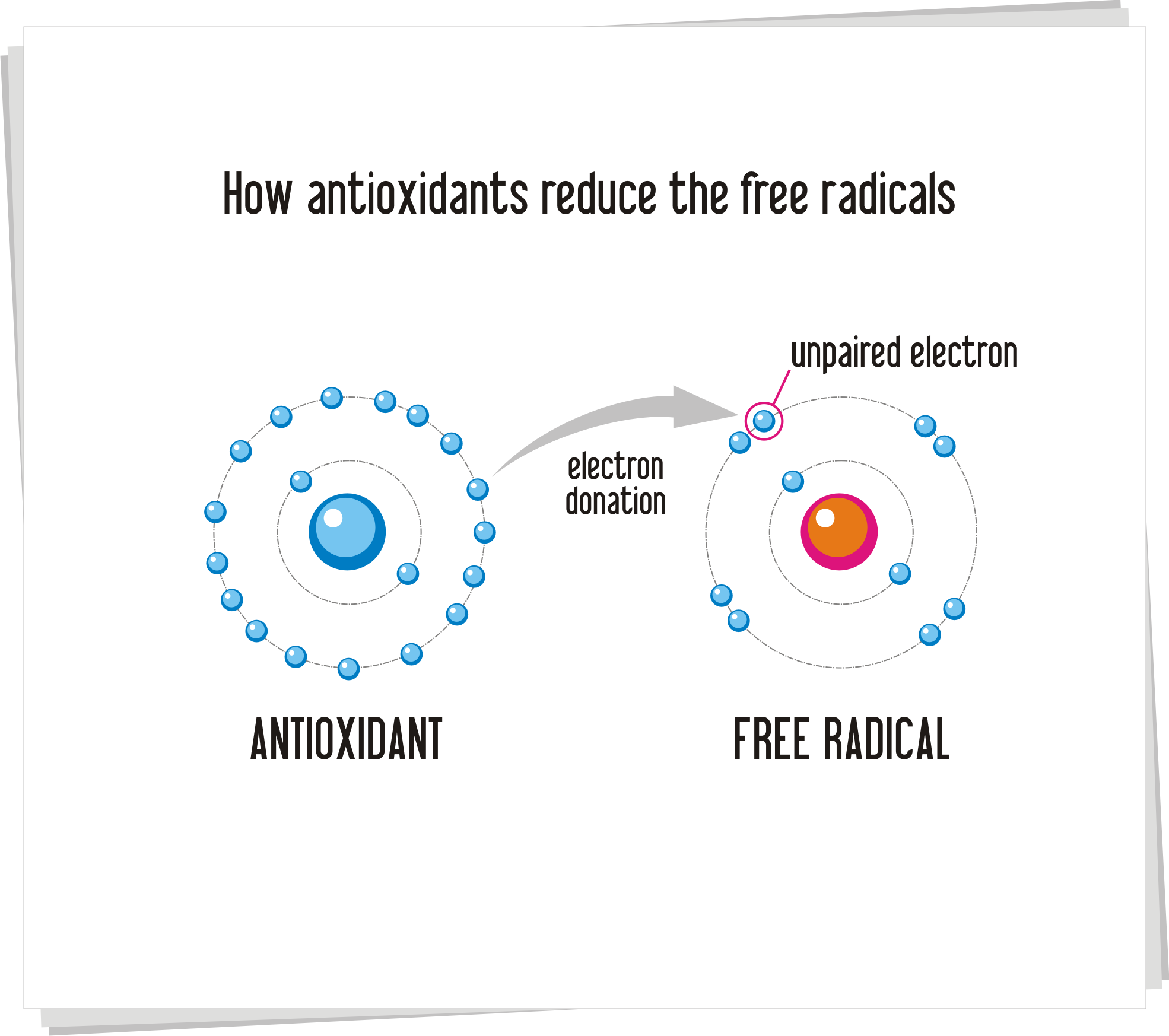 What is an antioxidant 88