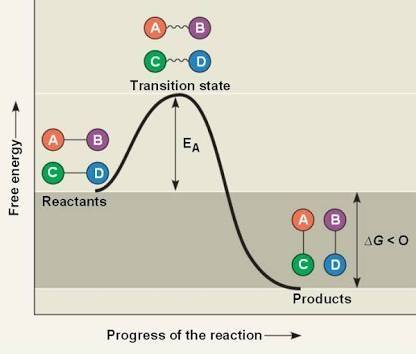 How Can Endothermic Reaction Be Spontaneous Quora