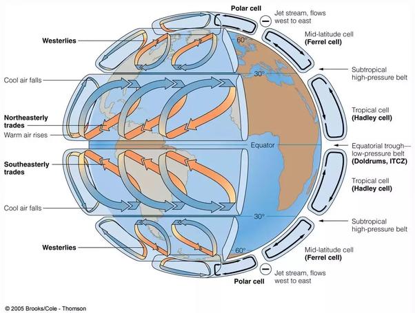 Biome - New World Encyclopedia