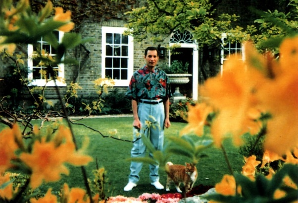 What are the last photos taken of Freddie Mercury? - Quora
