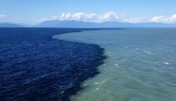 gulf of alaska where two oceans meet but never mix family and business