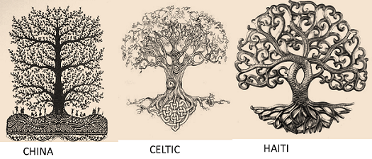 What does the tree of life symbolize quora What tree represents family