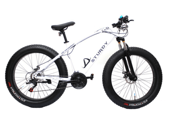 If You Are Looking For A Fat Bike In India That Is Under Inr 15000 The Sy What Should Be At