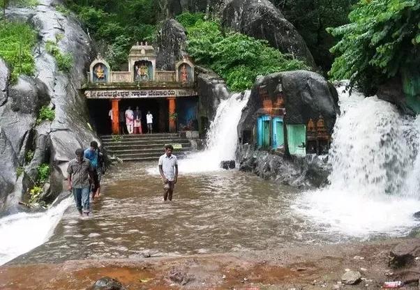 Assam Tourism Tour Packages